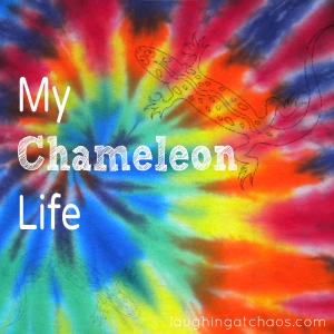 my chameleon life