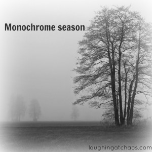 monochrome season