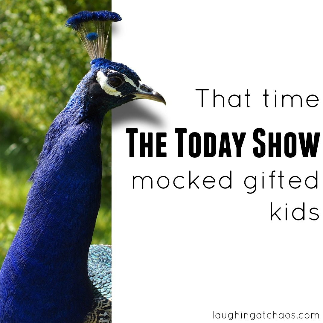 Gifted Ld Misdiagnosed And Misunderstood >> That Time The Today Show Mocked Gifted Kids Laughing At Chaos