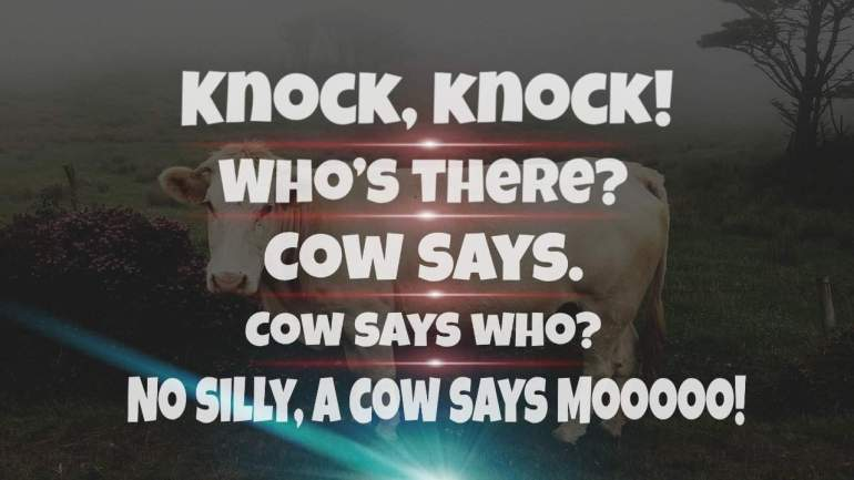 Cow Jokes For Kids