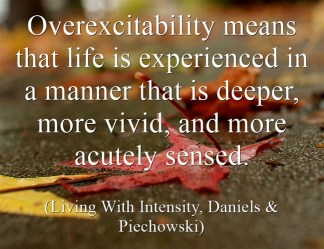 Overexcitability means 1