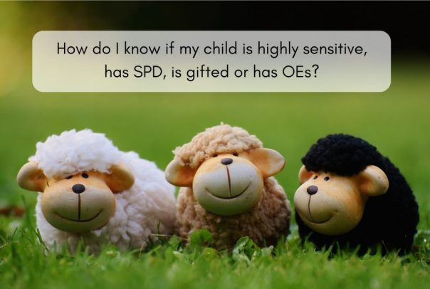 Toy sheep - highly sensitive, spd, gifted OEs - Laugh Love Learn