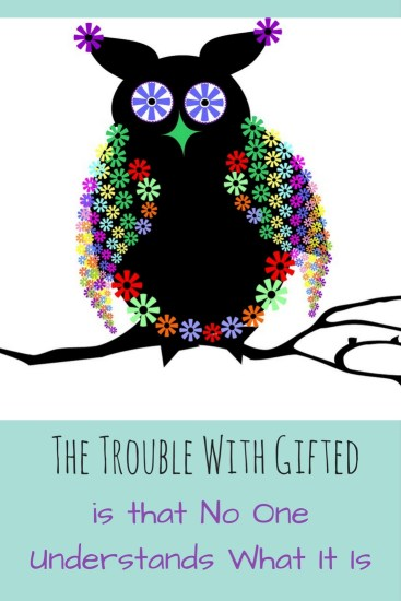 colourful patterned owl - Laugh Love Learn - trouble with gifted