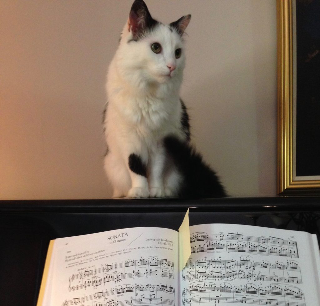 Nina is very critical of Beethoven