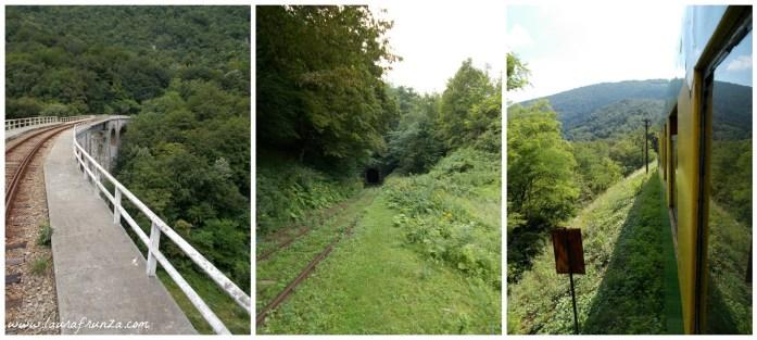 calea-ferata-oravita-anina