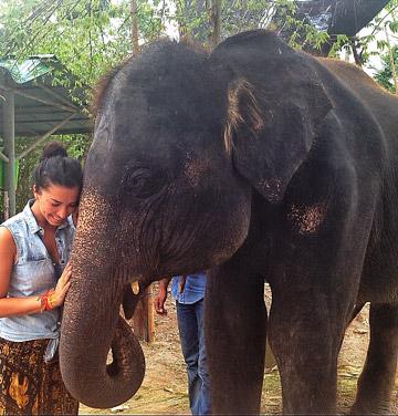 Aquí en el santuario de los elefantes... Mi amigo Pok
