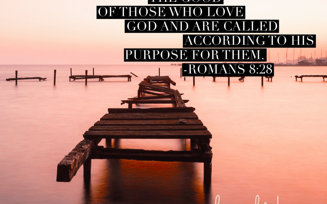 Purpose in our Pain