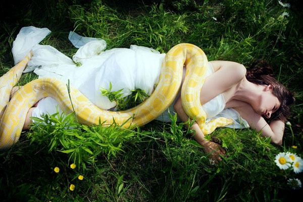snake-2014