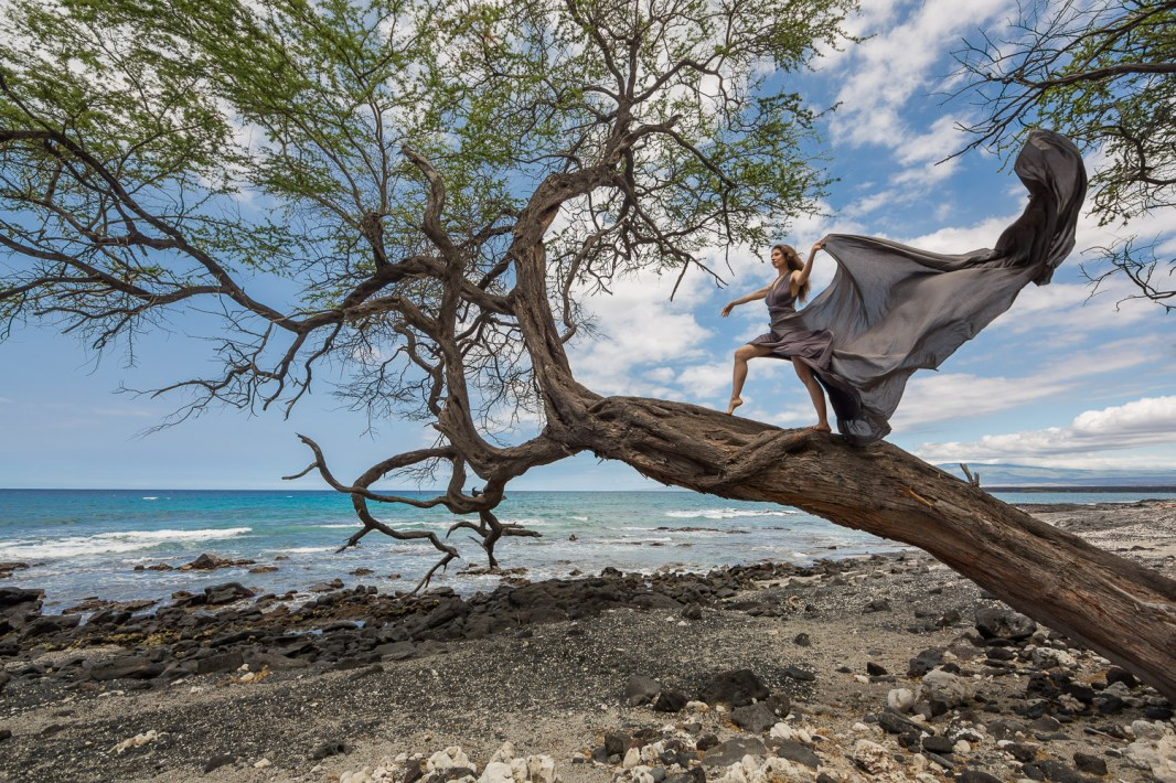 Laüra Hollick Wind Dancing