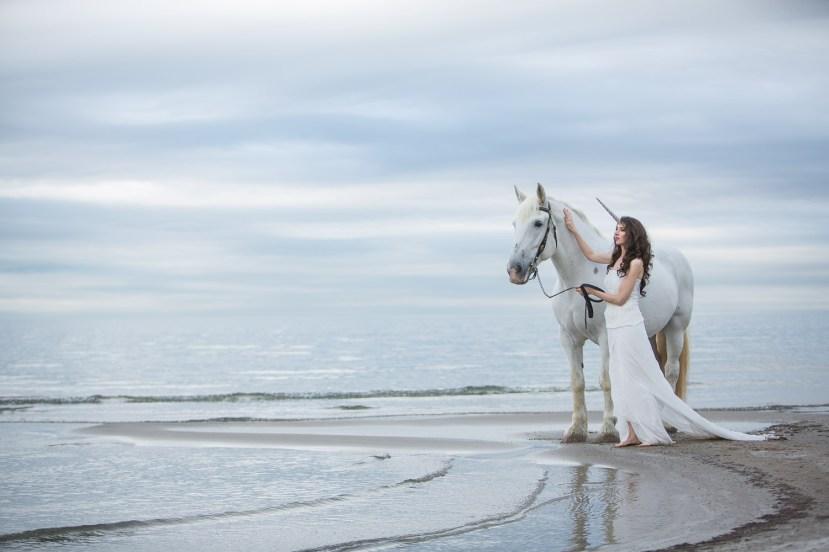 Laüra Hollick Unicorn