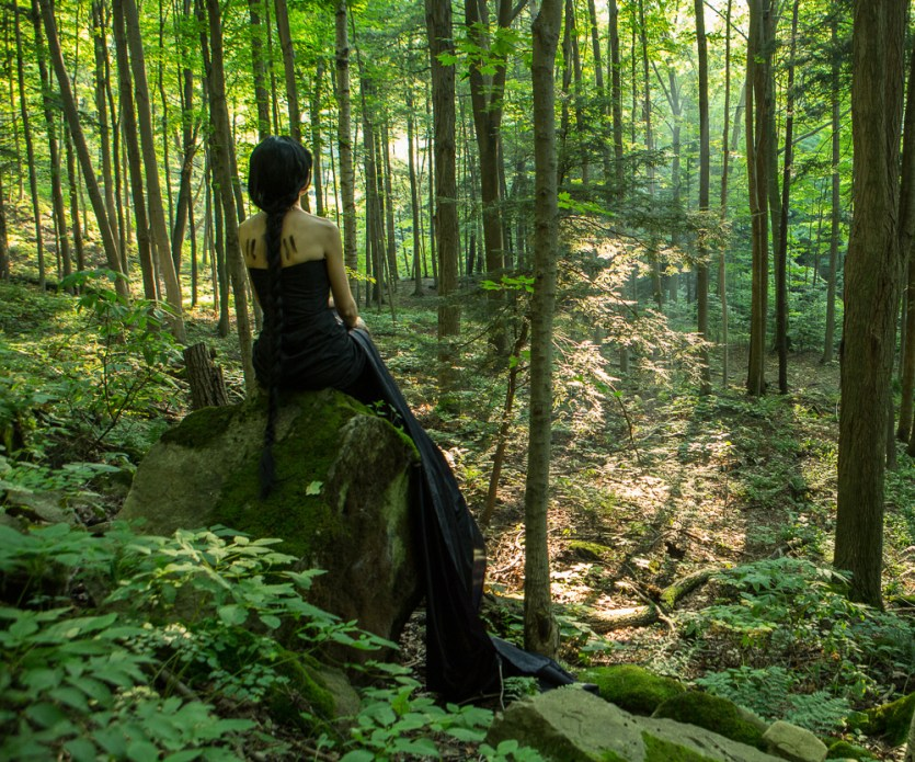 Forest Mediation 1