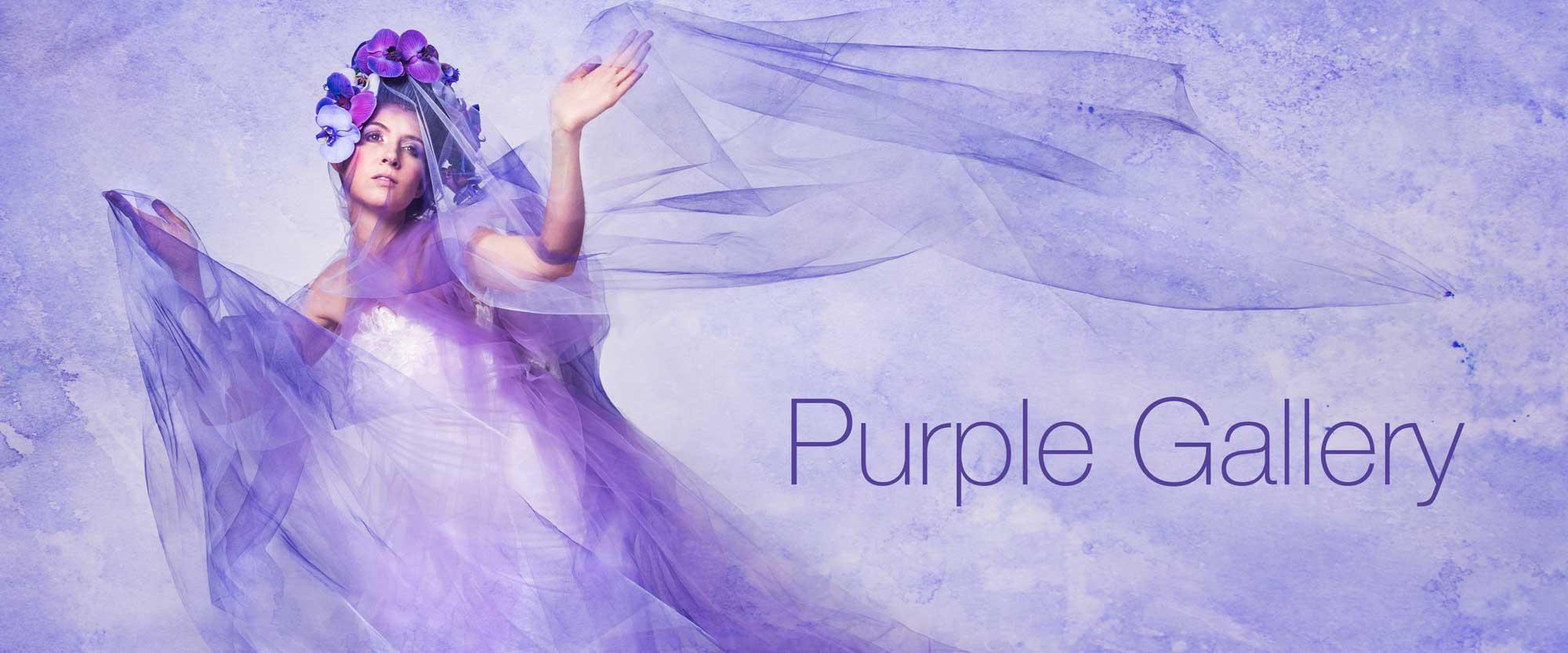 Laüra Hollick Purple Gallery