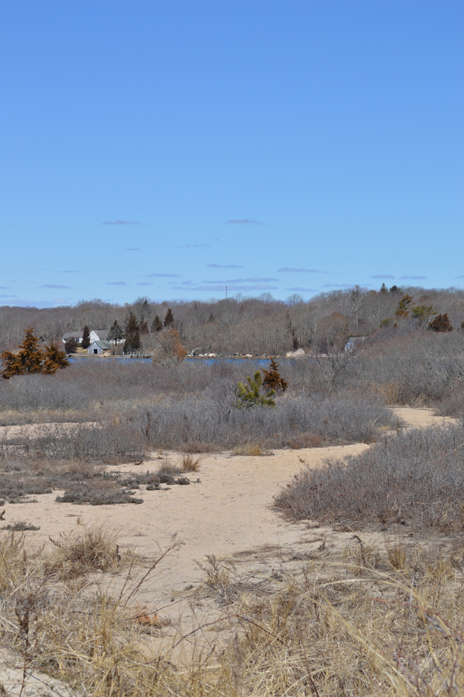 The salt pond in Westerly, RI