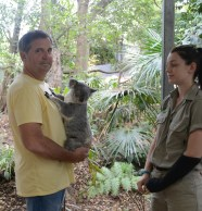 Mike and Theresa the koala
