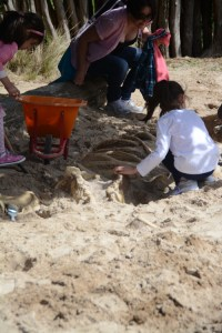 Kids uncovering a skeleton in the sand