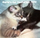 martas cat cousins