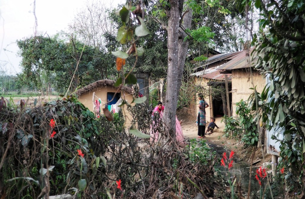 Sauraha, tradition, living, culture, Nepal, Chitwan, nationalpark, hut, nature, rural, houses, family, kid, child, flowers, nature, agriculture
