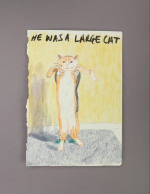 He Was A Large Cat