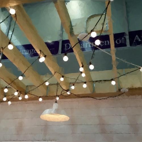 string lights 15wol