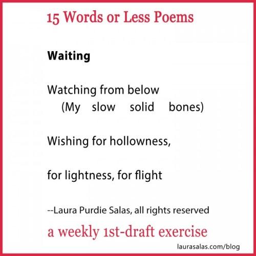 Waiting, a 15wol poem by Laura Purdie Salas