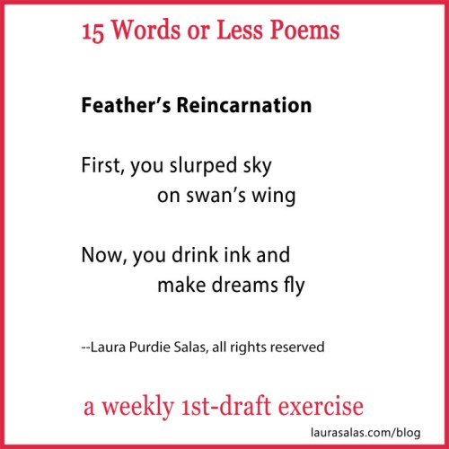 feather reincarnation