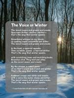 The Voice of Winter, a villanelle by Laura Purdie Salas