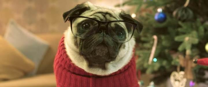 Gizmo the Pug Saves Christmas