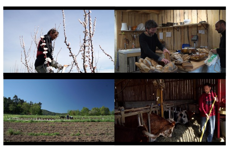 documentaire - Terroir Pays de Saint Félicien