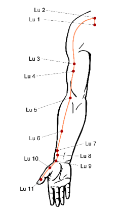 Meridiano del polmone