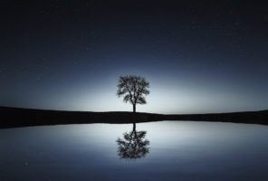 Meditazione degli organi: meditazione del Rene