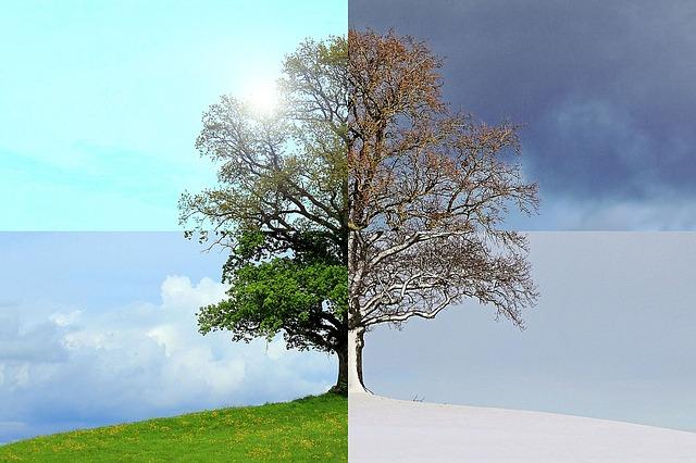 Ciclicità stagionale e ritmi vitali. Indicazioni per armonizzarsi con le stagioni