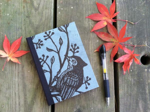 bird-book1