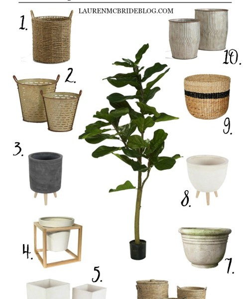 Best Indoor Planters