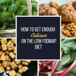 Sample Day of a Healthy Vegetarian Low FODMAP Diet ...