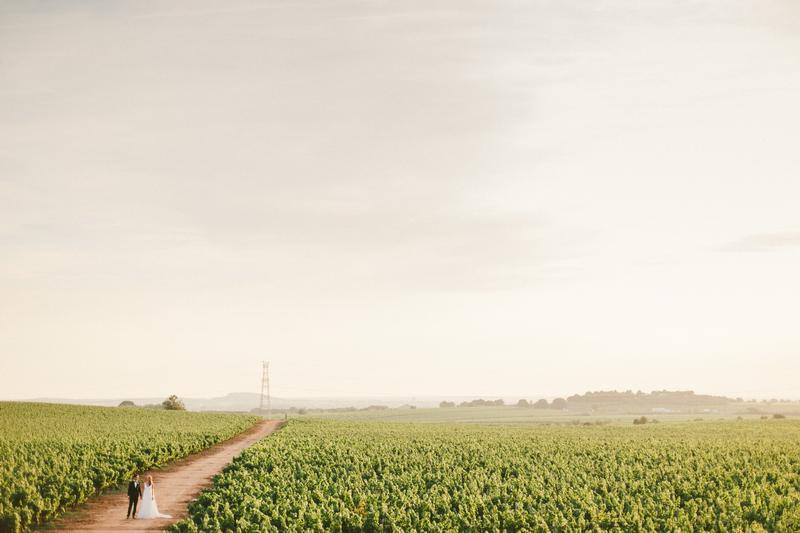 provence-vineyard-wedding-164