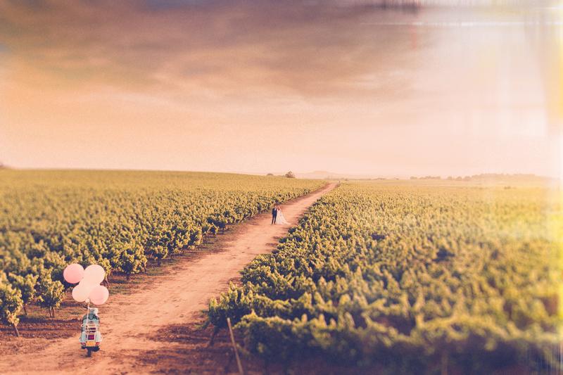 provence-vineyard-wedding-174