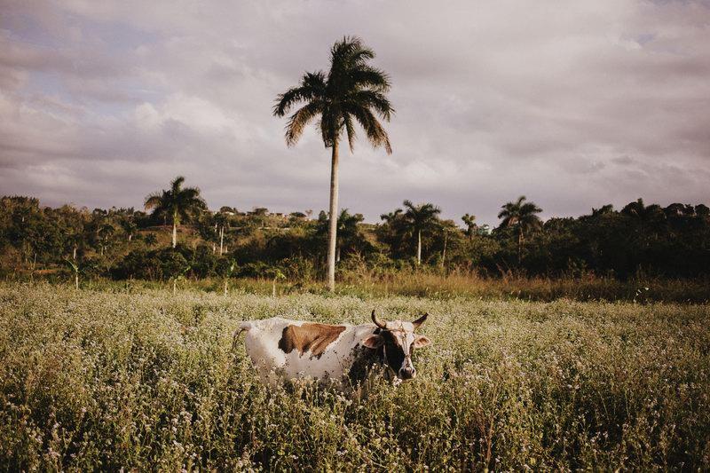 photographe_mariage_cuba-39
