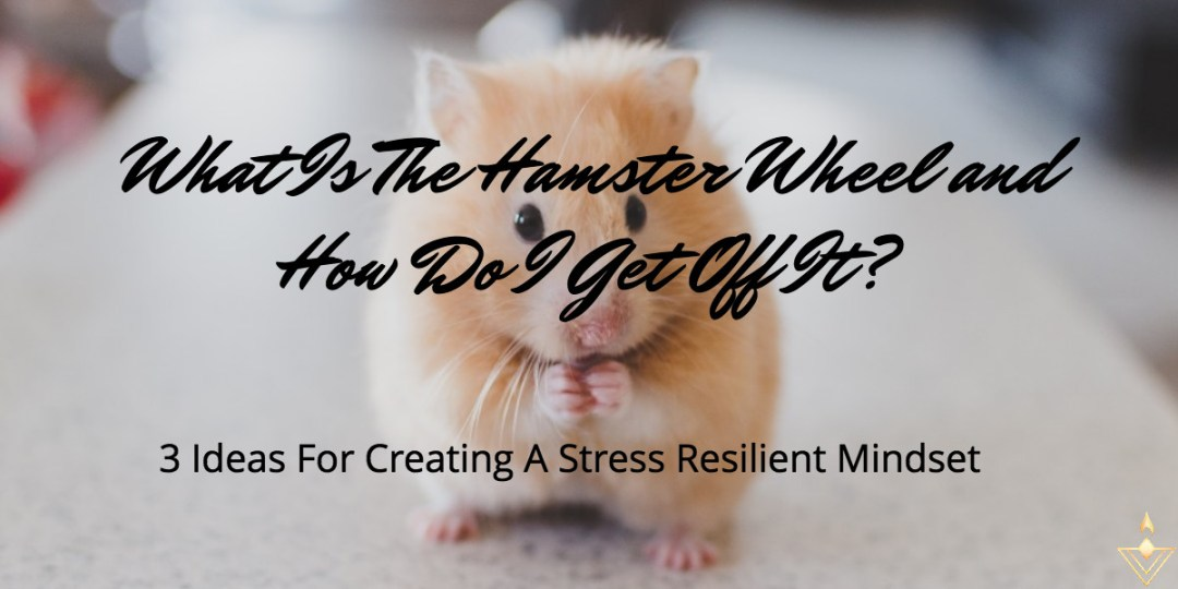 What Is The Hamster Wheel And How Do I Get Off It? 3 Ideas For Creating A Stress Resilient Mindset