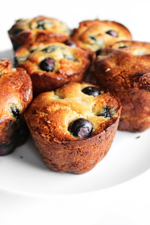 blueberry sugar free muffins