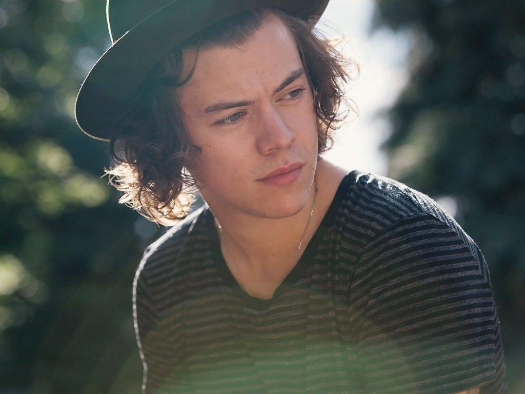 Harry Styles Lautde Band