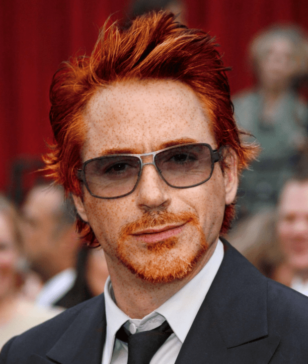 Robert Downey Jr roux