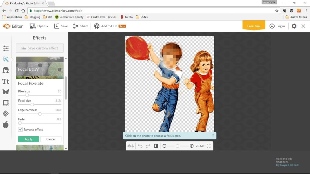 picmonkey-focal-pixelate-copie