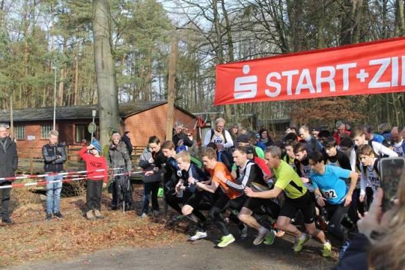 Startcross3060a.jpg