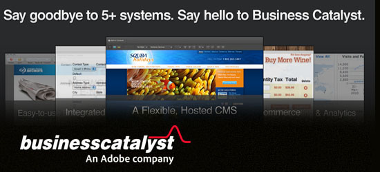 Build Incredible & Powerful Websites With Adobe Business Catalyst