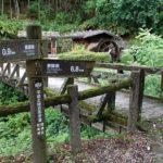 SENTIERO DA MAGOME A TSUMAGO– Una passeggiata di 8 Km nella natura giapponese