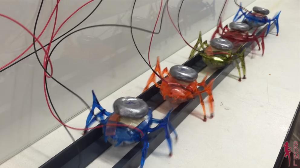 Llegan las hormigas robóticas capaces de mover toneladas