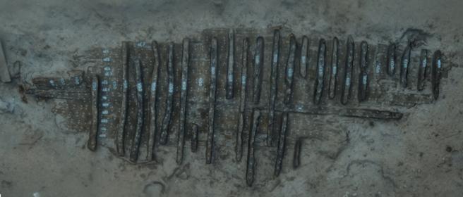 La imagen en 3D del yacimiento Cala Cativa I, que permite ver la extensión y los restos que se conservan.