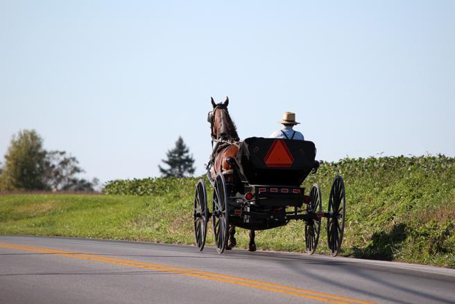Carro a caballo de un Amish en Lancaster, Pensilvania