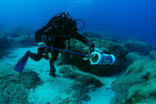 Louis Hadjioannou, biólogo marino de l Enalia Physis Environmental Research Centre, capturando un pez león