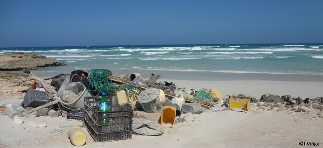 Más de 10 millones de toneladas de plástico acaban en los océanos cada año